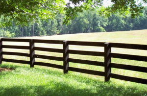 Cover photo for Fence Construction Workshop