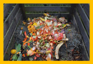 Cover photo for Composting 101 Workshop