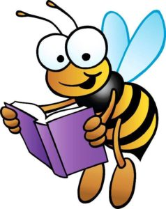 Cover photo for Stokes County Bee School