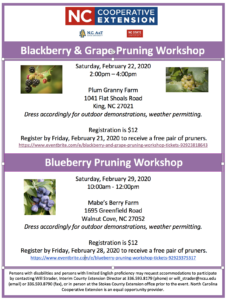 Cover photo for Small Fruit Pruning Workshops