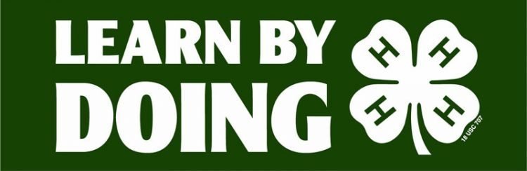 4-H Learn by Doing