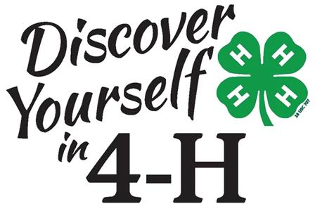 discover 4-h