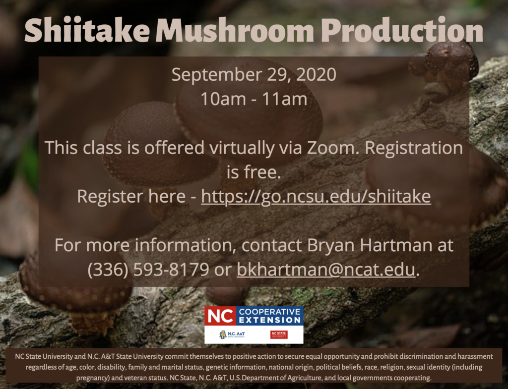 Shiitake Mushroom Production flyer