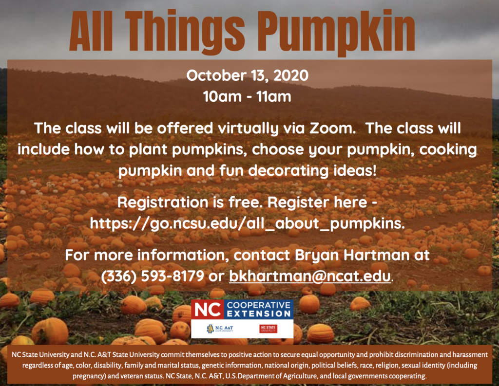 All Things Pumpkin flyer