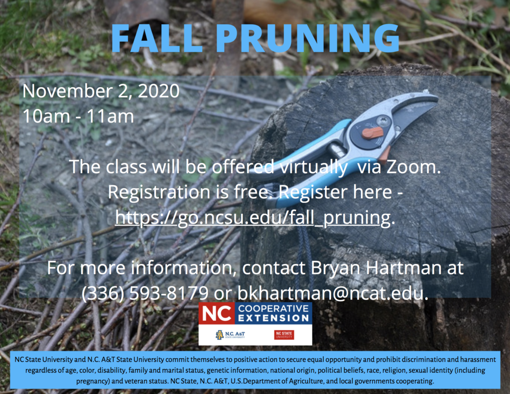 Fall Pruning flyer