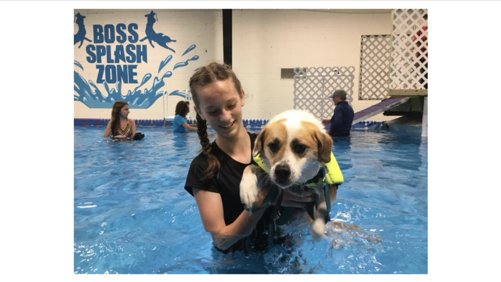 Girl with dog in pool