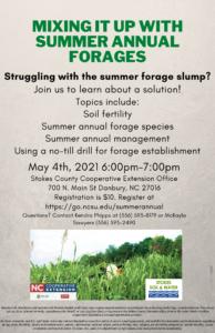 summer annual flyers