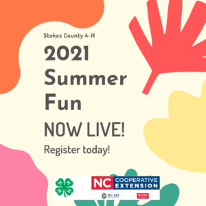 Cover photo for Stokes County 4-H 2021 Summer Fun Camps