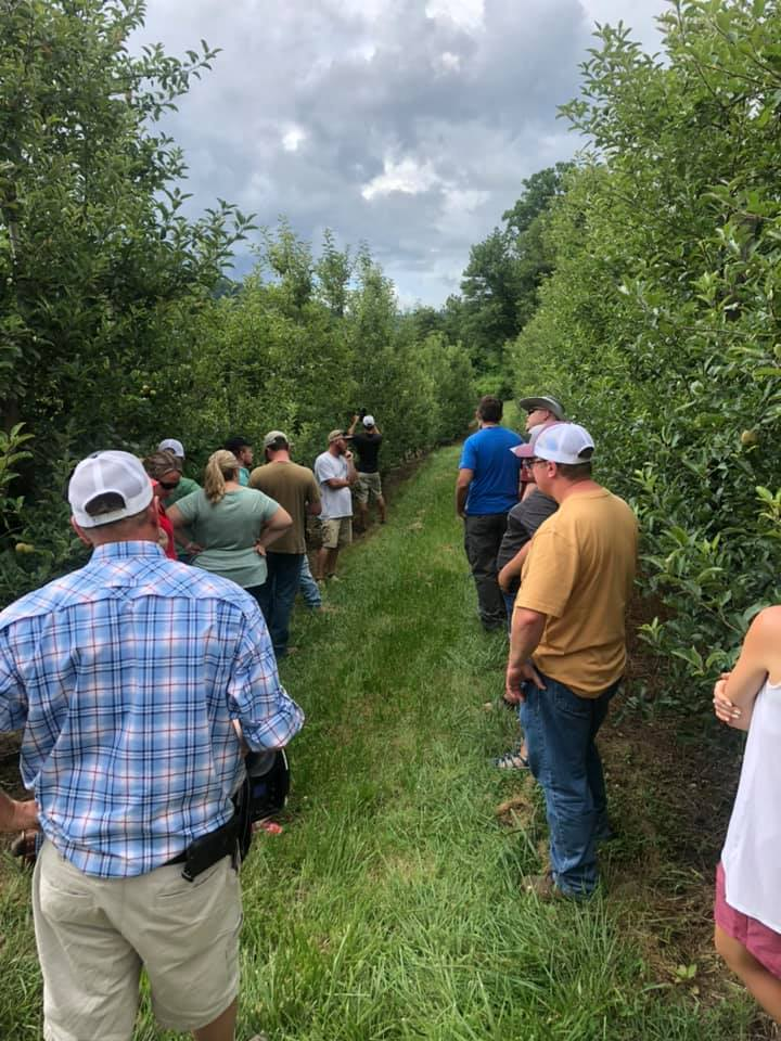 People touring an orchard