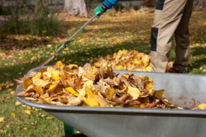 Cover photo for Recycling Leaves