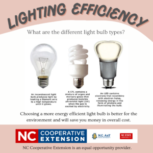 Cover photo for Light Bulb Types: What's the Difference?