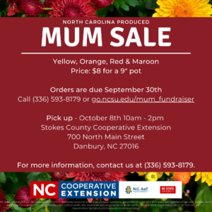 Cover photo for Mum Sale